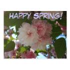 幸せな春の二重活気付くさくらんぼの郵便はがき ポストカード