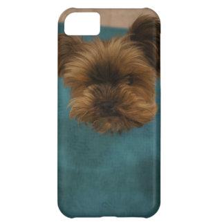 幸運なヨークシャーテリアの電話カバー iPhone5Cケース