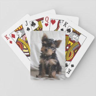幸運カードを遊ぶ日本のなヨークシャーテリア トランプ
