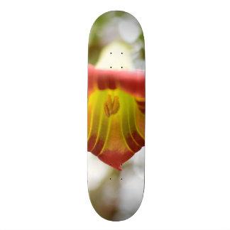 幻覚を誘発する花 スケートボード