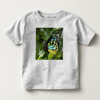 幼児の蝶ワイシャツ トドラーTシャツ