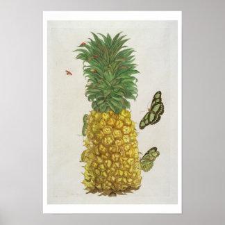幼虫および蝶が付いているパイナップル(手c ポスター