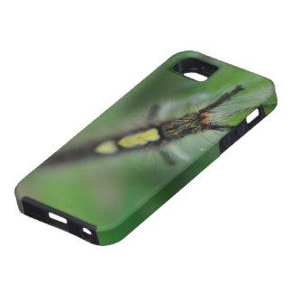 幼虫のIPhone 5の場合 iPhone SE/5/5s ケース