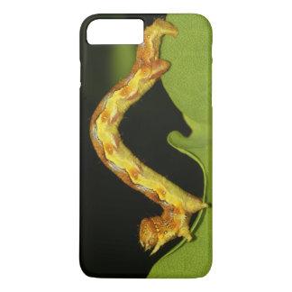 幼虫Erannis Defoliariaとしてまだらにされたアンバー iPhone 8 Plus/7 Plusケース