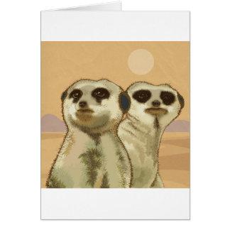 幾つかMeerkats カード