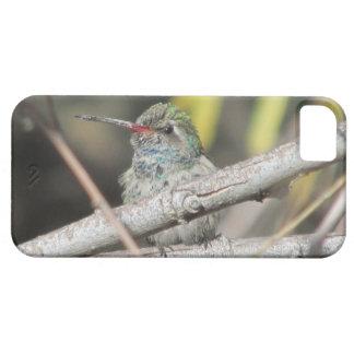 広勘定書を出されたハチドリのiPhone 5の場合 iPhone SE/5/5s ケース