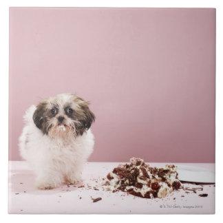 床のケーキを持つ子犬 タイル