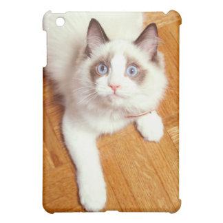 床、高い眺めのRagdoll猫 iPad Miniケース