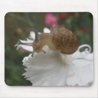 庭かたつむりおよび白いカーネーションのマウスパッド マウスパッド