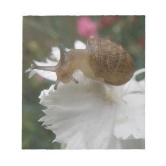庭かたつむりおよび白いカーネーションのメモ帳 ノートパッド