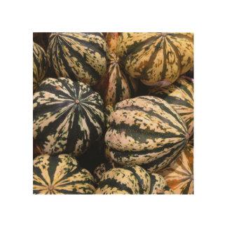 庭から新しい南瓜およびひょうたん- ウッドウォールアート