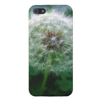 庭のタンポポ iPhone 5 カバー