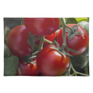 庭のトマト ランチョンマット