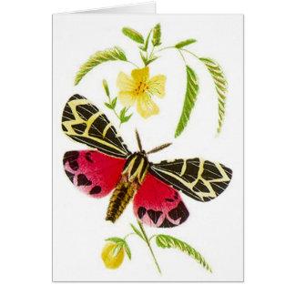 庭のヒトリガ及び花柄! 庭カード カード