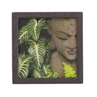 庭のローカルな情報の彫像: Chiang Ma ギフトボックス