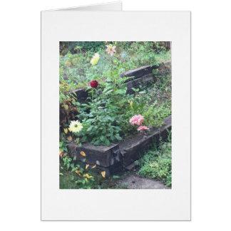 庭の写真 カード