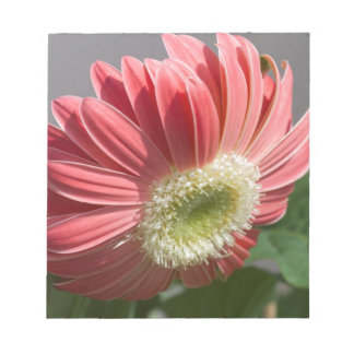 庭の星状体の花 ノートパッド