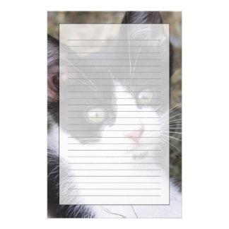 庭の白黒猫の子ネコ 便箋