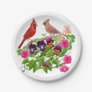 庭の紙皿の北の基本的な鳥 ペーパープレート