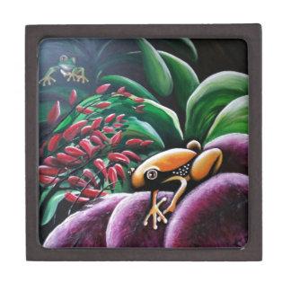 庭の葉のカエル ギフトボックス