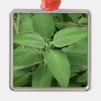 庭の賢明な植物。 タスカニー、イタリア メタルオーナメント