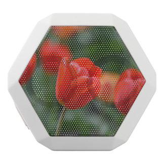 庭の赤いチューリップ ホワイトBluetoothスピーカー