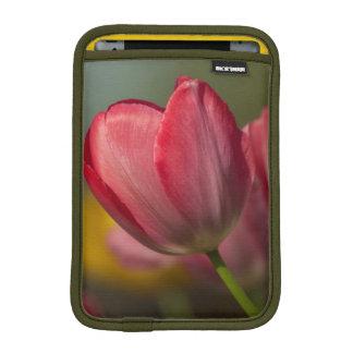 庭の赤くおよび黄色のチューリップのクローズアップ iPad MINIスリーブ