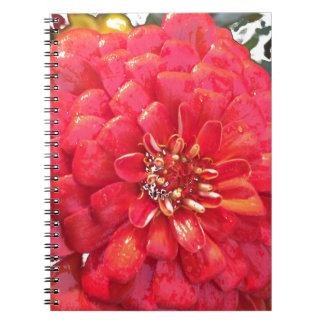 庭の開花-赤 ノートブック