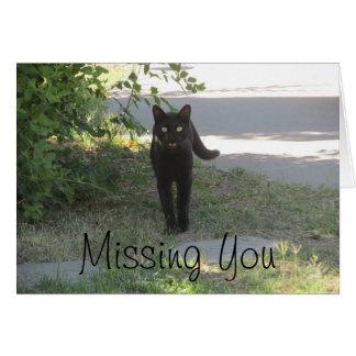 庭の黒猫を恋しく思います カード