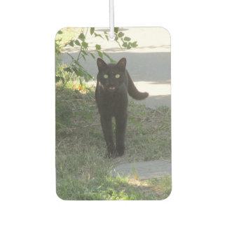 庭の黒猫 カーエアーフレッシュナー