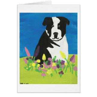 庭のChloe カード