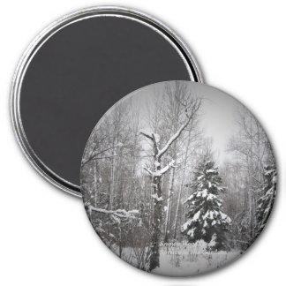 庭のSnowyの森林トウヒ マグネット
