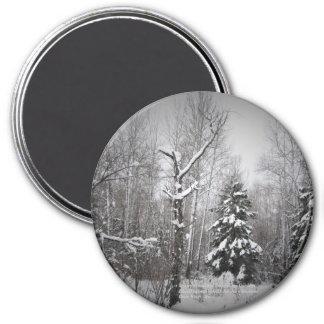 庭のSnowyの森林マツ マグネット