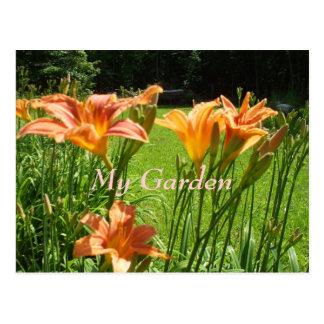 庭を祝いますオニユリの週私の庭 ポストカード