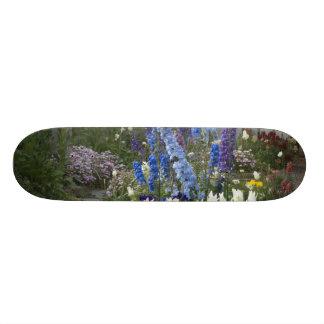 庭道、ジョージアに沿う春の花 スケボーデッキ
