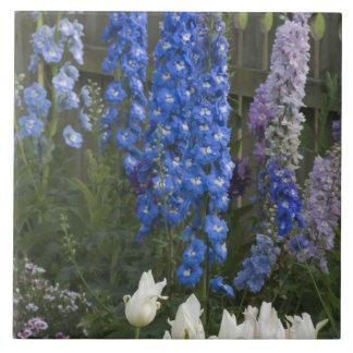 庭道、ジョージア2に沿う春の花 タイル