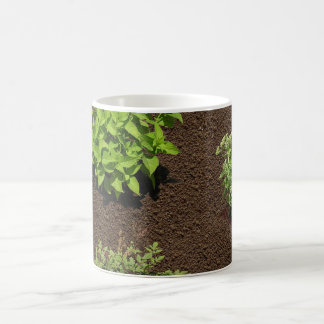 庭 コーヒーマグカップ