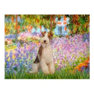 庭-ワイヤーフォックステリア犬3 ポストカード