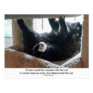 引用文の郵便はがきを持つ黒猫 ポストカード