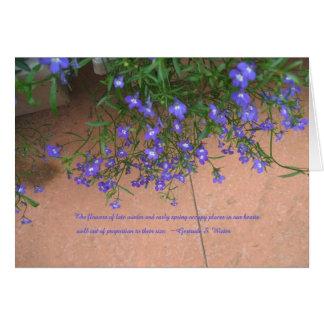 引用語句のロベリアの花 カード
