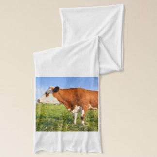 強いFriesian牛 スカーフ