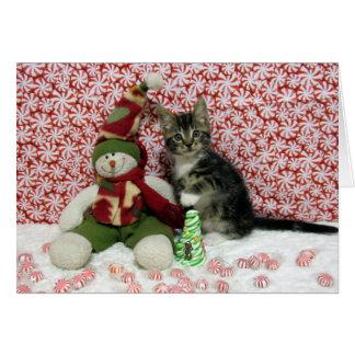 強盗の子ネコ猫の救助のクリスマス カード