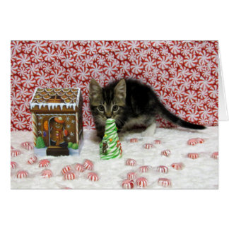 強盗猫の子ネコのクリスマスの救助 カード