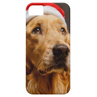 彼のクリスマスのために提起しているゴールデン・リトリーバー iPhone 5 CASE