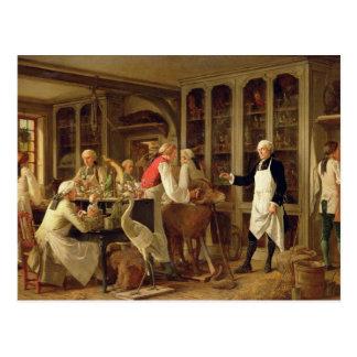 彼のLaboraのルイジーンMarie Daubenton (1716-99年) ポストカード