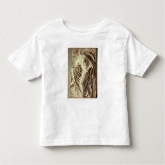 彼女のサンダル、c.420-420を紀元前に調節するアテーナーのナイキ トドラーTシャツ