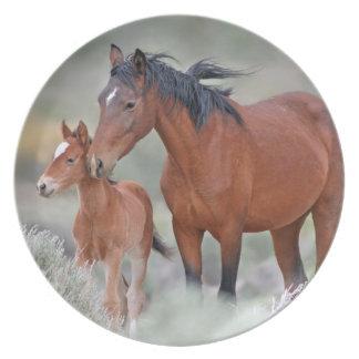 彼女の子馬を持つ野生のムスタングのロバ プレート