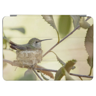 彼女の巣のメスのハチドリ iPad AIR カバー