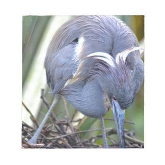 彼女の巣を増強している鷲 ノートパッド