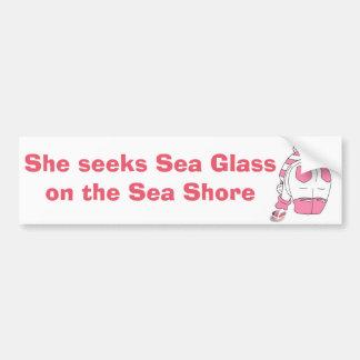 彼女は海海岸の海ガラスを追求します バンパーステッカー